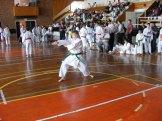 Hinode_karate_kazincbarcika_2014_001037