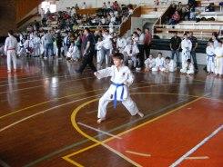 Hinode_karate_kazincbarcika_2014_001041