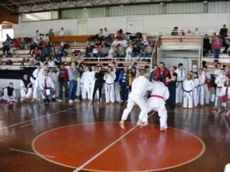 Hinode_karate_kazincbarcika_2014_001042