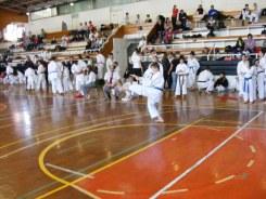 Hinode_karate_kazincbarcika_2014_001073