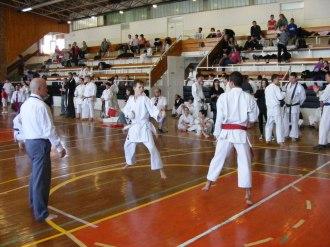 Hinode_karate_kazincbarcika_2014_001075