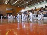 Hinode_karate_kazincbarcika_2014_001076