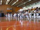 Hinode_karate_kazincbarcika_2014_001078