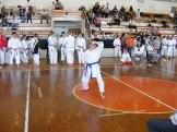 Hinode_karate_kazincbarcika_2014_001087