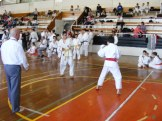 Hinode_karate_kazincbarcika_2014_001088