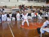 Hinode_karate_kazincbarcika_2014_001089