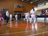 Hinode_karate_kazincbarcika_2014_001125