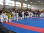 Hinode_Karate_Sarvar_Kupa_2014_01