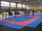 Hinode_Karate_Sarvar_Kupa_2014_03