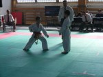 Hinode_Karate_Sarvar_Kupa_2014_09
