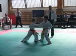Hinode_Karate_Sarvar_Kupa_2014_10