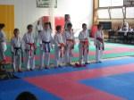 Hinode_Karate_Sarvar_Kupa_2014_11