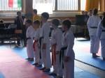Hinode_Karate_Sarvar_Kupa_2014_12