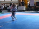Hinode_Karate_Sarvar_Kupa_2014_13