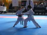 Hinode_Karate_Sarvar_Kupa_2014_23