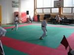 Hinode_Karate_Sarvar_Kupa_2014_25