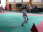 Hinode_Karate_Sarvar_Kupa_2014_26