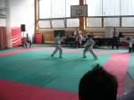 Hinode_Karate_Sarvar_Kupa_2014_27