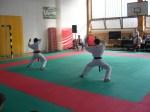 Hinode_Karate_Sarvar_Kupa_2014_29