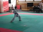 Hinode_Karate_Sarvar_Kupa_2014_32