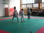 Hinode_Karate_Sarvar_Kupa_2014_36