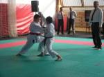 Hinode_Karate_Sarvar_Kupa_2014_41