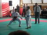 Hinode_Karate_Sarvar_Kupa_2014_46