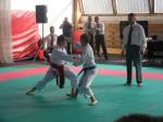 Hinode_Karate_Sarvar_Kupa_2014_47