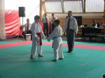 Hinode_Karate_Sarvar_Kupa_2014_48