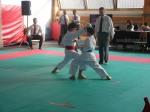 Hinode_Karate_Sarvar_Kupa_2014_49