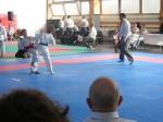 Hinode_Karate_Sarvar_Kupa_2014_54