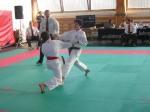 Hinode_Karate_Sarvar_Kupa_2014_58