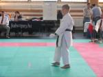 Hinode_Karate_Sarvar_Kupa_2014_59