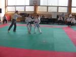 Hinode_Karate_Sarvar_Kupa_2014_61