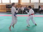 Hinode_Karate_Sarvar_Kupa_2014_63