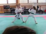Hinode_Karate_Sarvar_Kupa_2014_64
