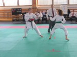 Hinode_Karate_Sarvar_Kupa_2014_65