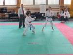 Hinode_Karate_Sarvar_Kupa_2014_67