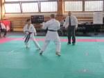 Hinode_Karate_Sarvar_Kupa_2014_69