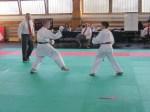 Hinode_Karate_Sarvar_Kupa_2014_70
