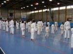 Hinode_Karate_Sawada_2014_02