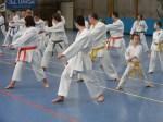 Hinode_Karate_Sawada_2014_04