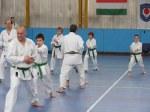 Hinode_Karate_Sawada_2014_07