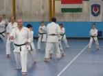 Hinode_Karate_Sawada_2014_08
