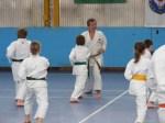 Hinode_Karate_Sawada_2014_09