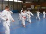 Hinode_Karate_Sawada_2014_13