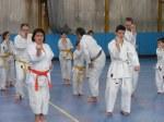 Hinode_Karate_Sawada_2014_15