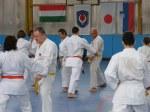 Hinode_Karate_Sawada_2014_21