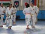 Hinode_Karate_Sawada_2014_23