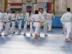 Hinode_Karate_Sawada_2014_24